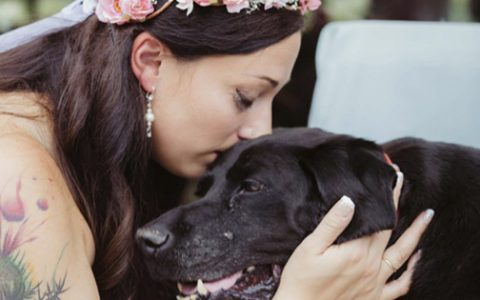 dying dog carried down the wedding aisle