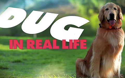 disney dug in the real life