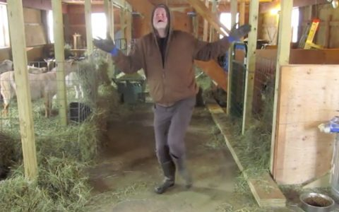 farmer dances in barn