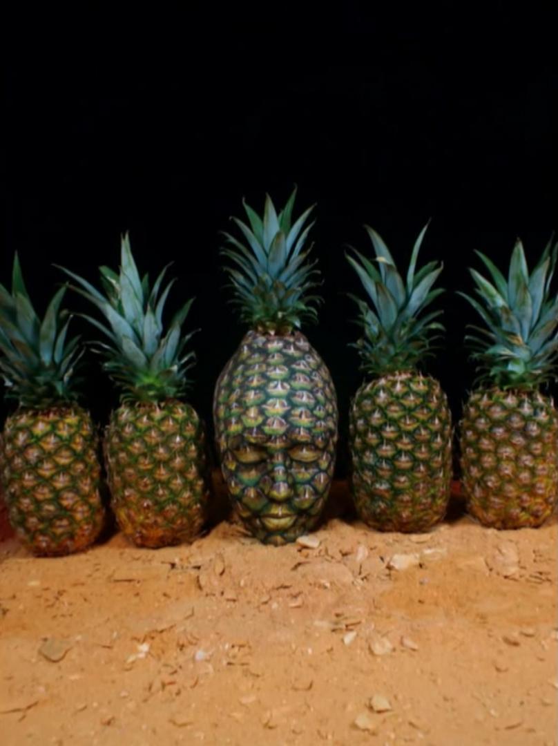 body paint artist Johannes Stötter - Stotter - pineapple