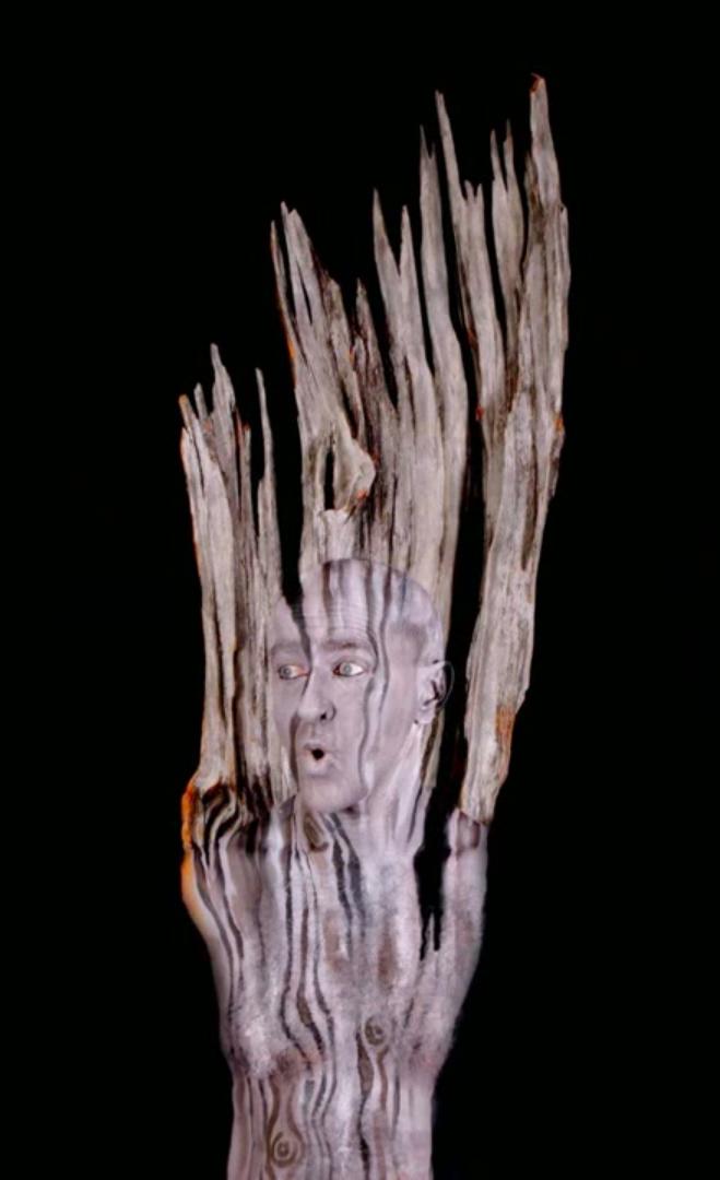 body paint artist Johannes Stötter - Stotter - tree