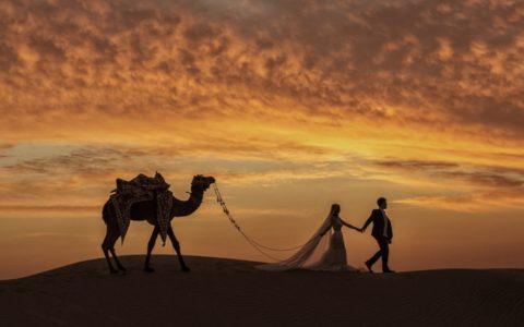 Mind-Blowingly Beautiful Wedding Photos _ camel _ everything inspirational