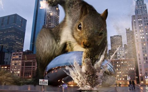 Squirrel's Super Hero Pose _ Photoshop _ Photos _ everythinginspirational