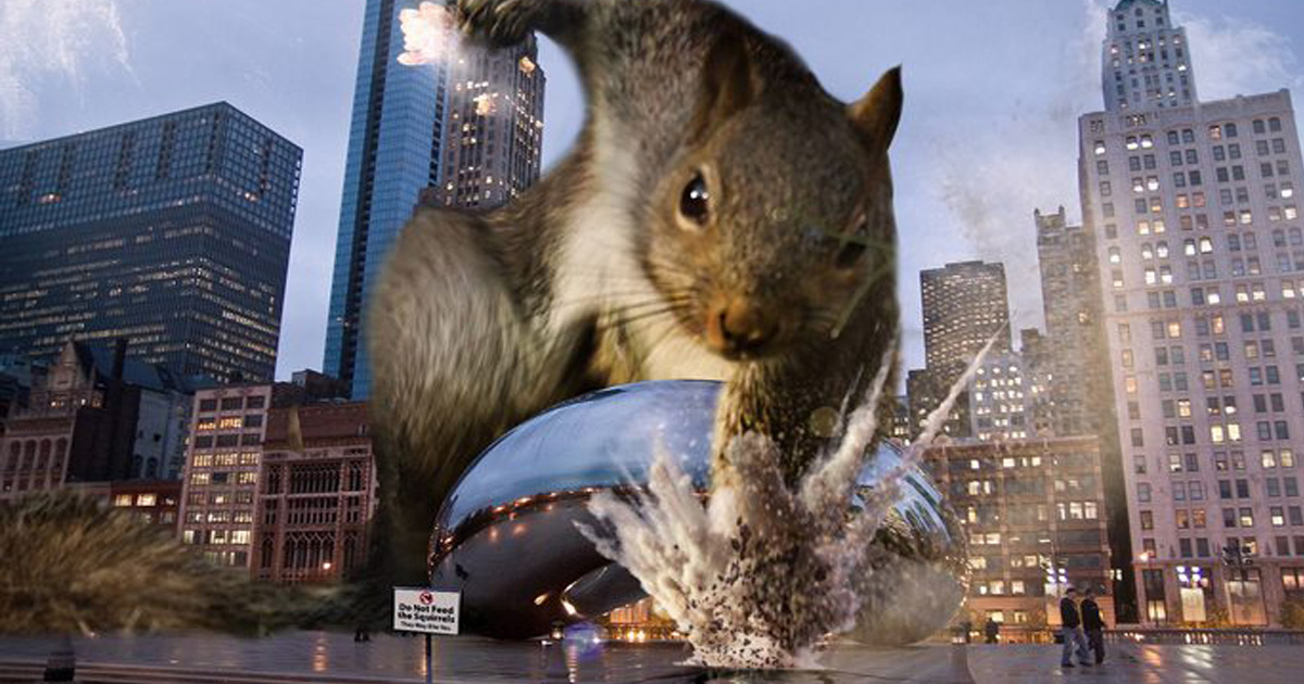 Squirrel S Super Hero Pose Welcomes Hysterical Photoshop