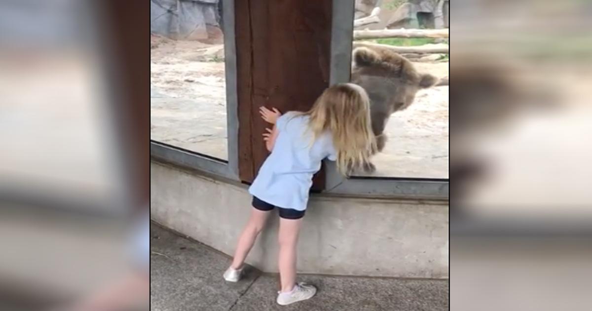 peek-a-boo with a bear
