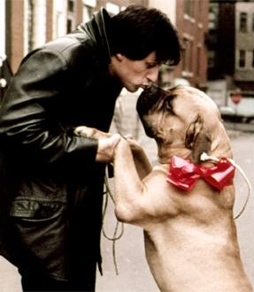 Rocky Star Was So Broke He Had to Sell His Dog _ Butkus _ everything inspirational