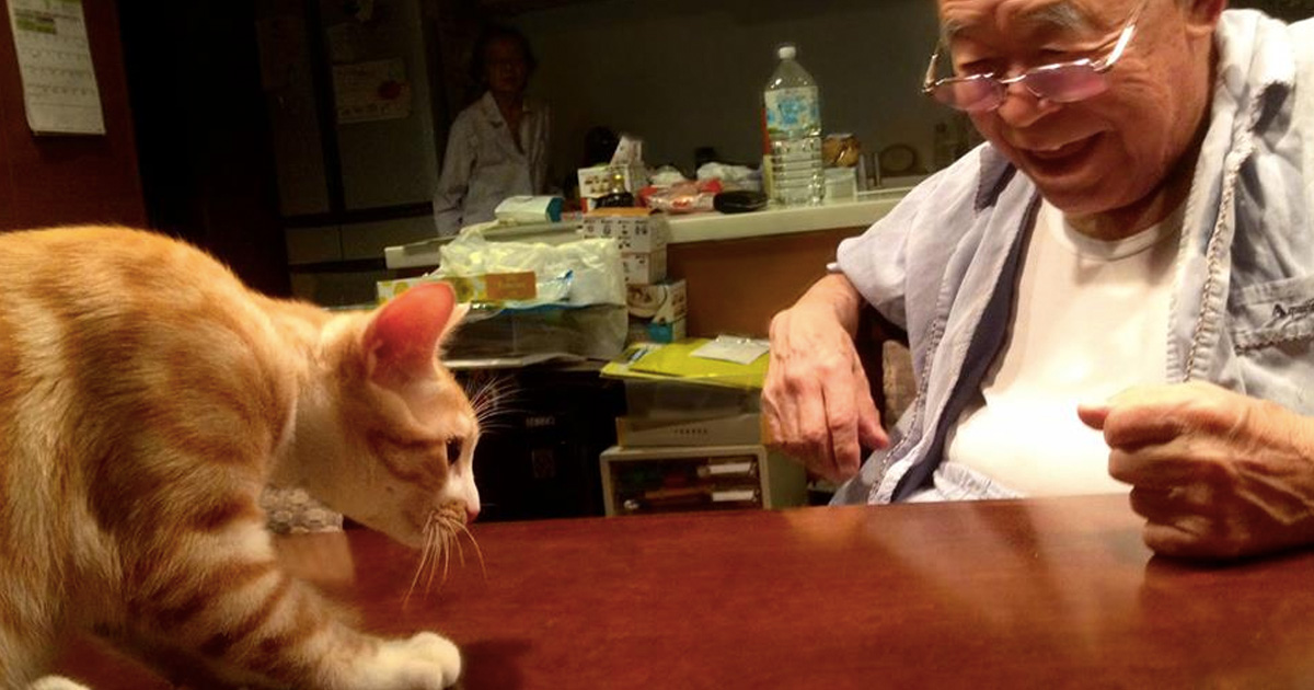 Grandpa's Life Changed _ Alzheimers _ Cat _ Everything inspirational