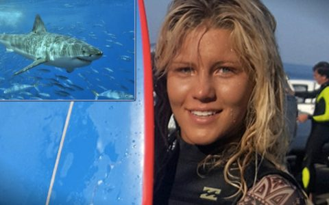 Hero Swims Straight Towards Shark Attacking A 13-Year-Old Girl _ everything inspirational