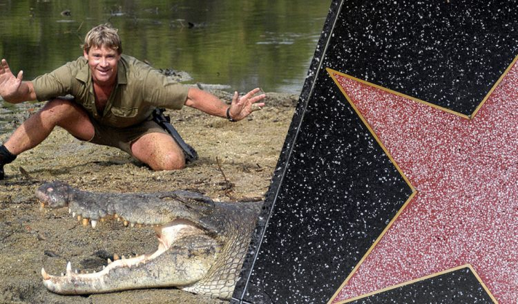 Watch Actor Steve Irwin's Family Learn He Will Receive A Hollywood Star _ crocodile hunter _ everything inspirational