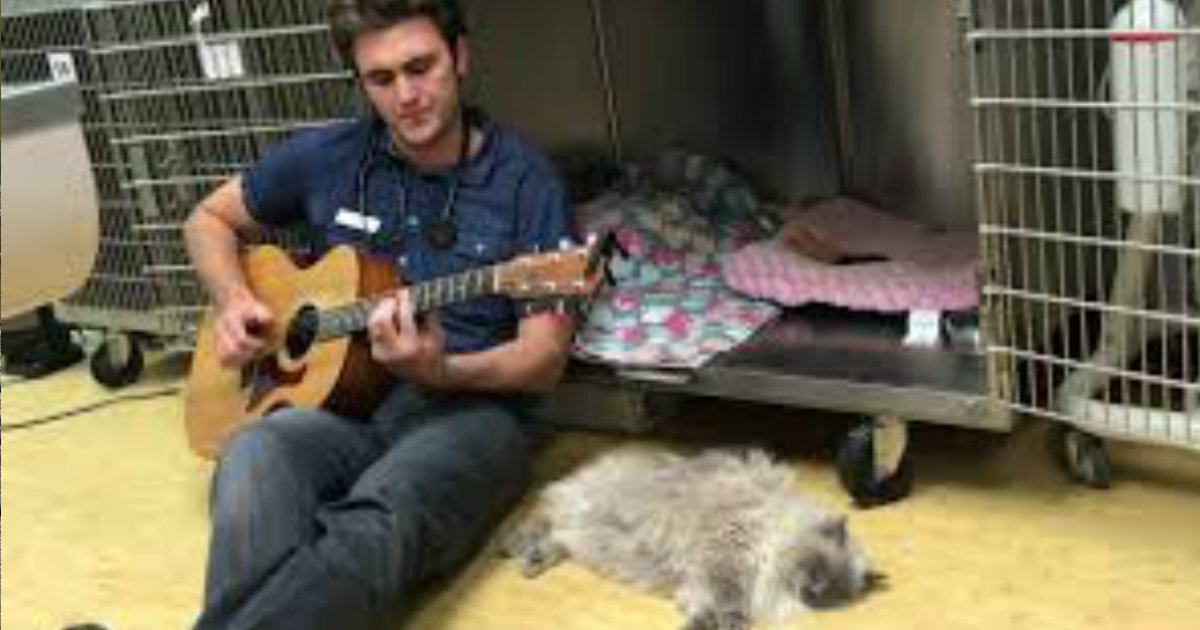 Talented Veterinarian Sings To Calm His Furry Patients